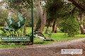 Property photo of 9 Banksia Place Rosebud VIC 3939