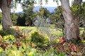 Property photo of 97 Anderson Road Nimbin NSW 2480
