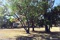 Property photo of 56 Dalgangal Road Gayndah QLD 4625