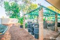 Property photo of 15 Limpet Crescent South Hedland WA 6722