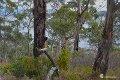 Property photo of 48 Matthew Flinders Drive Alonnah TAS 7150