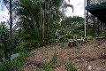 Property photo of 25 Adele Crescent Bahrs Scrub QLD 4207
