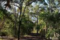 Property photo of 127 Stockyard Road North Isis QLD 4660