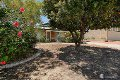 Property photo of 15 Elkington Mews Clarkson WA 6030