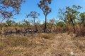 Property photo of 990 Leonino Road Darwin River NT 0841