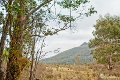 Property photo of 12673 Highland Lakes Road Golden Valley TAS 7304