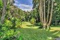 Property photo of 49 Butler Drive Kuranda QLD 4881