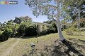 Property photo of 11 Canning Street Ainslie ACT 2602