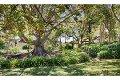 Property photo of 6 Ensbey Road Bald Knob QLD 4552