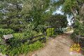 Property photo of 146 Cobbitty Road Cobbitty NSW 2570