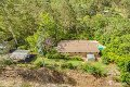 Property photo of 42 Hoop Pine Court Advancetown QLD 4211