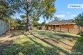Property photo of 19 Orange Grove Castle Hill NSW 2154