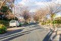 Property photo of 82 Olive Street Prospect SA 5082