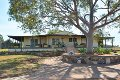 Property photo of 818 Lovedale Road Allandale NSW 2320