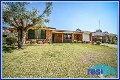 Property photo of 53 Adele Crescent Ashtonfield NSW 2323