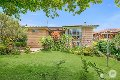 Property photo of 15 Netting Street Sunnybank Hills QLD 4109