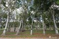 Property photo of 612A Old Clare Road Airville QLD 4807