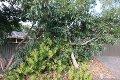 Property photo of 8 Canberra Drive Aberfoyle Park SA 5159