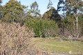 Property photo of 1401 Bogan Road Golden Valley TAS 7304