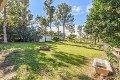 Property photo of 53 Mamaku Street Fernvale QLD 4306