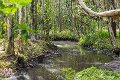 Property photo of 79 Mount Mee Road Delaneys Creek QLD 4514