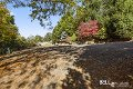 Property photo of 237 Belgrave-Gembrook Road Emerald VIC 3782