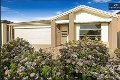 Property photo of 16 Victorking Drive Point Cook VIC 3030