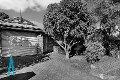 Property photo of 5 Tamdhu Court Greenwith SA 5125