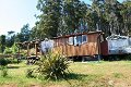Property photo of 29871 Tasman Highway Weldborough TAS 7264