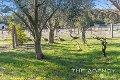 Property photo of 52 McGellin Way Morangup WA 6083