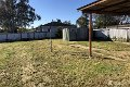 Property photo of 35 Wirilda Street Leeton NSW 2705