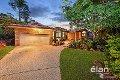 Property photo of 11 Longreef Court Albany Creek QLD 4035