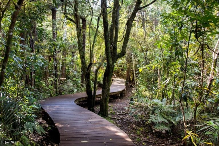 Property photo for 125 Woodglen Road, Glen Eden, Auckland, 0602