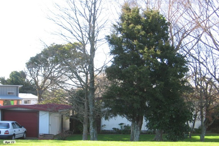 Photo of property in 41 Avenue Road, Foxton, 4814