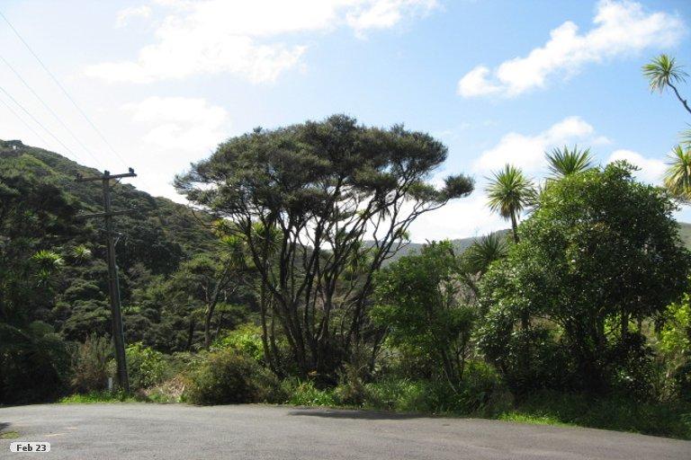 Property photo for 19 Tasman View Road, Bethells Beach, 0781