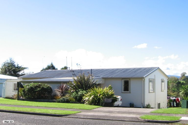 Property photo for 22 Bledisloe Avenue, Putaruru, 3411