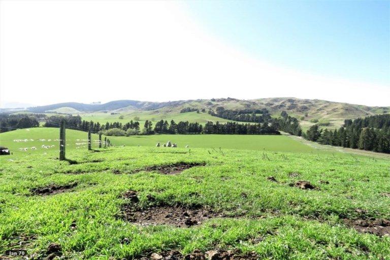 Property photo for 179 Patersons Road, Motunau, Greta Valley, 7483