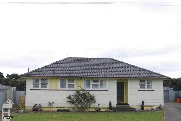 Photo of property in 19 Herrington Street, Foxton, 4814
