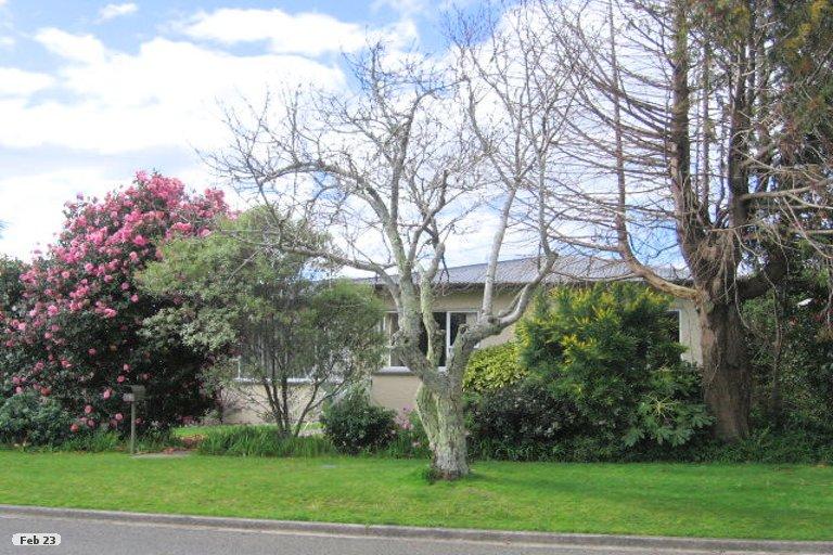 Property photo for 15 Tyrone Street, Greerton, Tauranga, 3112