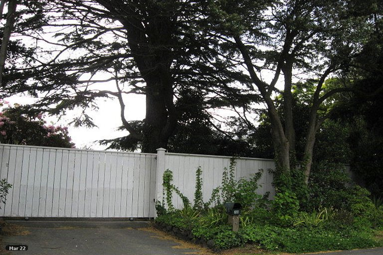 Property photo for 202 Clyde Road, Burnside, Christchurch, 8053
