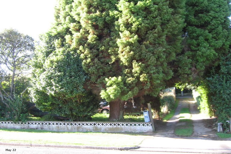 Property photo for 7 Central Street, Putaruru, 3411
