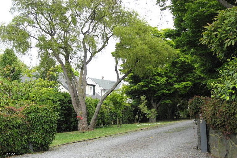 Property photo for 181 Clyde Road, Burnside, Christchurch, 8053