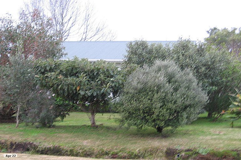 Photo of property in 8 Point Wells Road, Point Wells, 0986