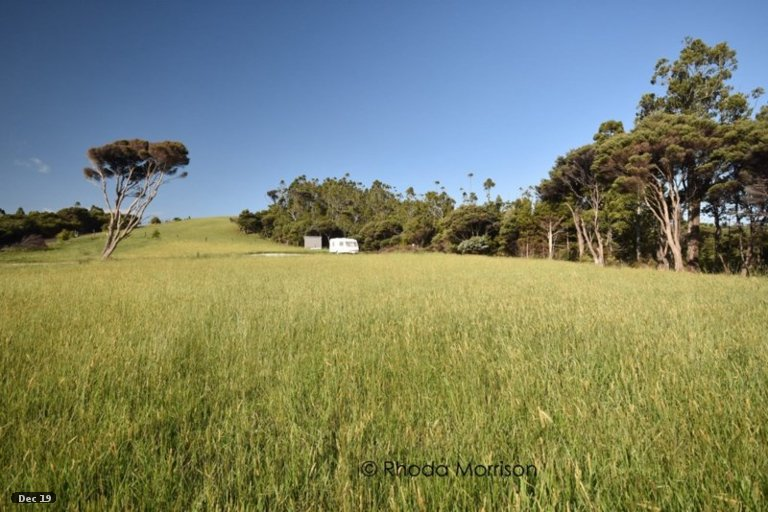 Property photo for 14 Te Wairoa Lane, Tinopai, 0593