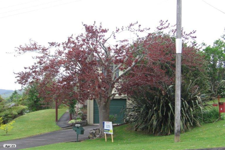 Property photo for 4 Bennett Street, Paeroa, 3600