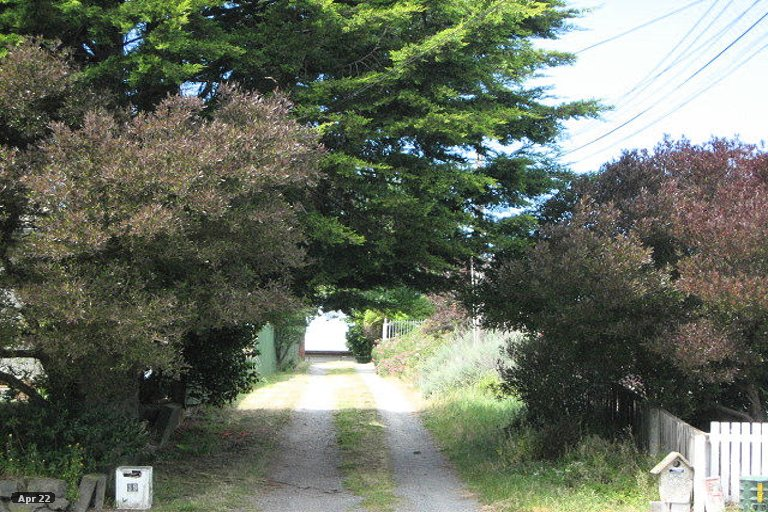 Property photo for 39 Cuffs Road, Wainoni, Christchurch, 8061