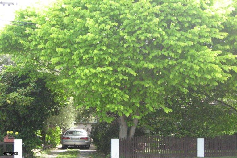 Property photo for 42 Cuffs Road, Wainoni, Christchurch, 8061