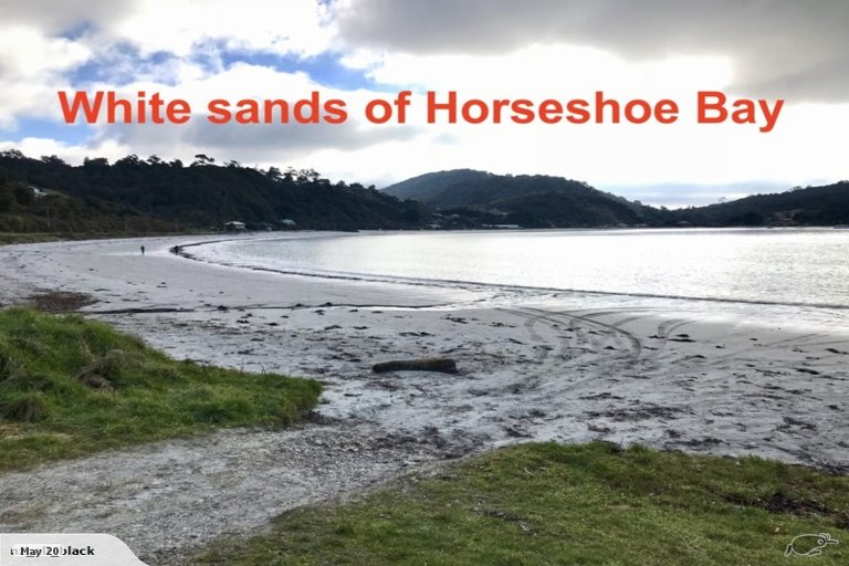 Photo of property in 186 Horseshoe Bay Road, Stewart Island / Rakiura, Stewart Island, 9818