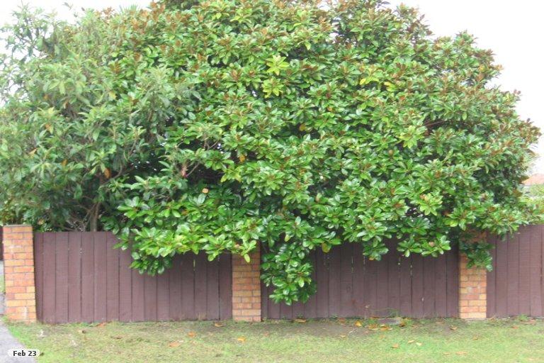 Property photo for 23 Matuhi Rise, Henderson, Auckland, 0612