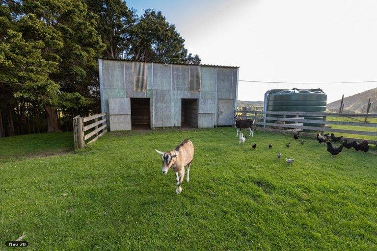 Photo of property in 63B Poyner Road, Makarau, Warkworth, 0981